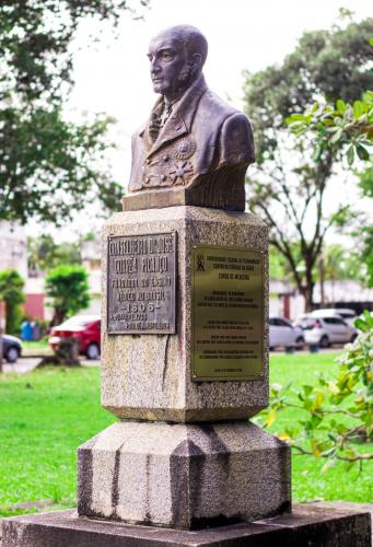 A estátua do Conselheiro Dr. José Corrêa Picanço está localizada na entrada do Centro de Ciências da Saúde, tendo sido inaugurada na data de 18 de fevereiro de 2008. Sendo uma homenagem do curso de medicina da UFPE alusiva aos 200 anos do ensino médico no Brasil.  Corrêa Picanço foi o fundador do ensino médico no Brasil, nascido na cidade de Goiana -PE, obteve seu título de Doutor em Medicina na Universidade de Paris, tendo criados as primeiras escolas de de medicina no Brasil em 1808: a Faculdade de Medicina da Bahia e Faculdade de Medicina do Rio de Janeiro.